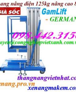 Thang nâng người 125kg cao 8 mét Gamlift - Germany